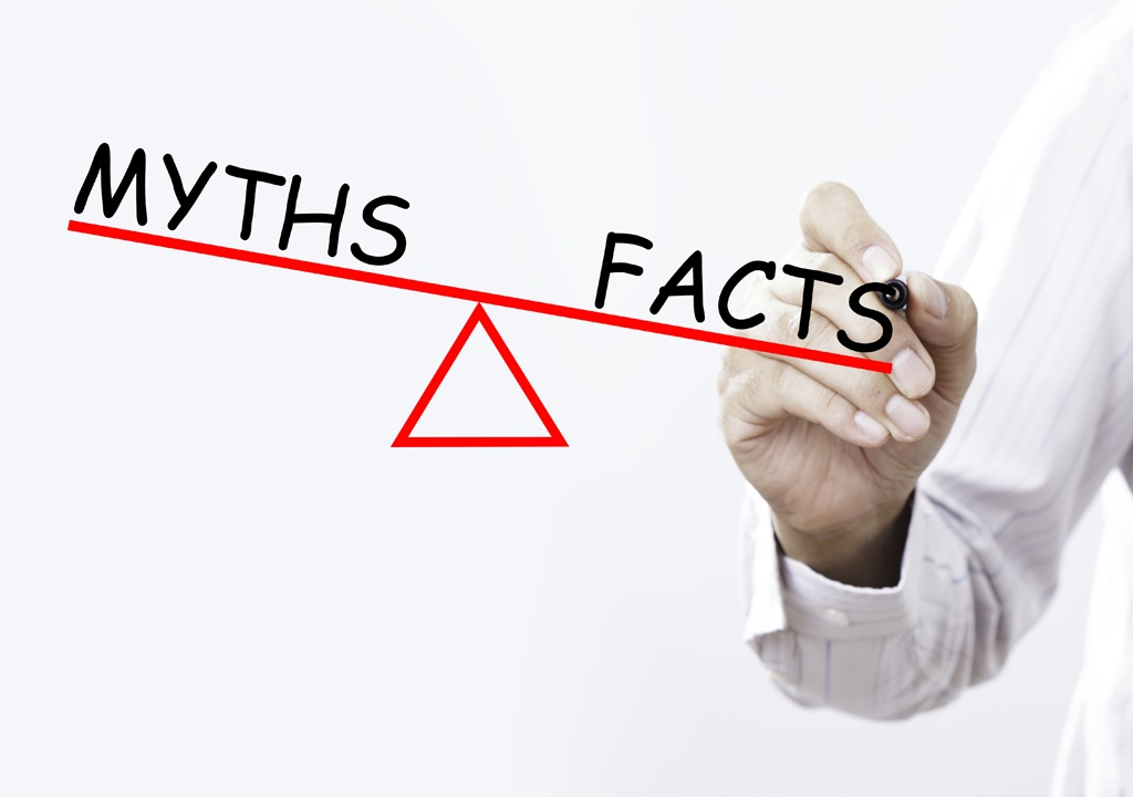 myths and facts low-code